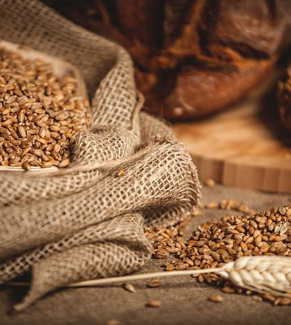 3 Essential Reasons Women Need Fibre Daily!